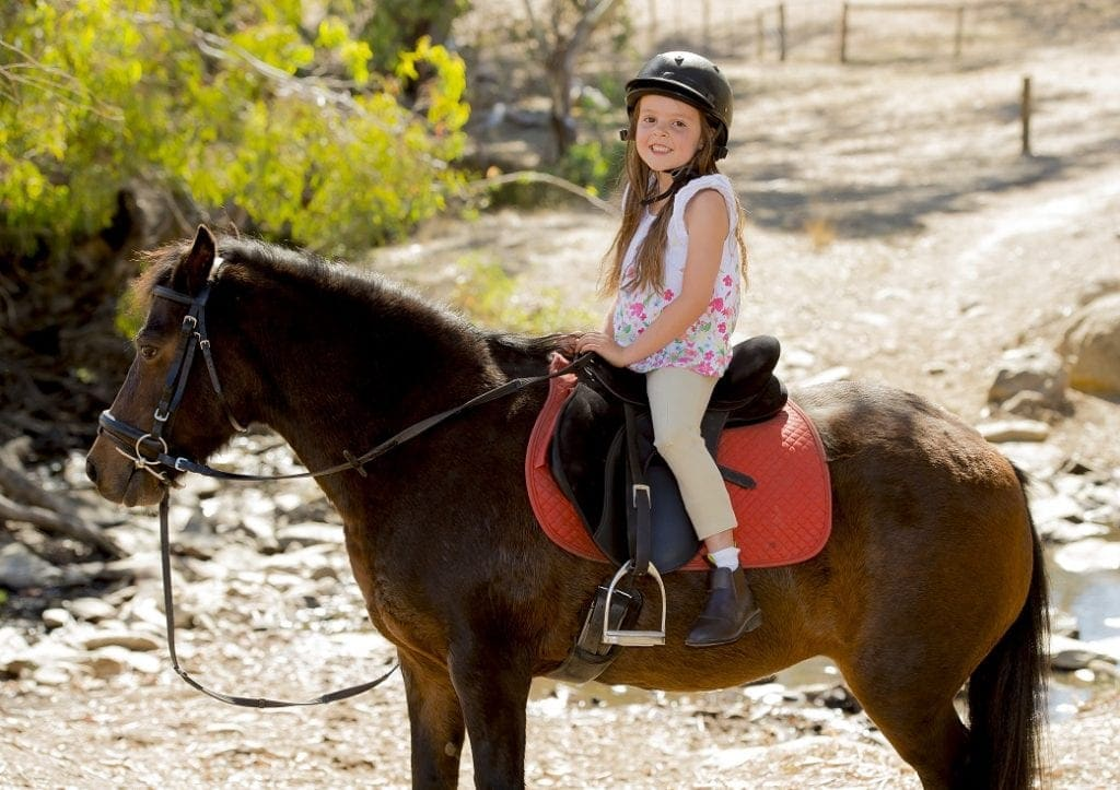 horse riding for kids in Brisbane