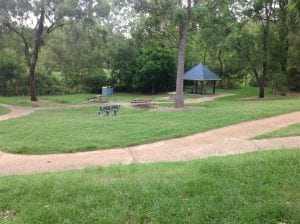 2 alderly park for half days out by families magazine. image of playground in alderly.