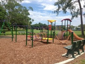 Deagon playground with swingset and monkey bars and many other playground equipment
