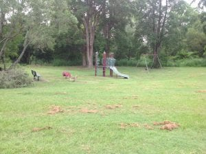 some play equipment for kids at gaythore. a slide, swingset, chair and spring rocking chairs for kids.