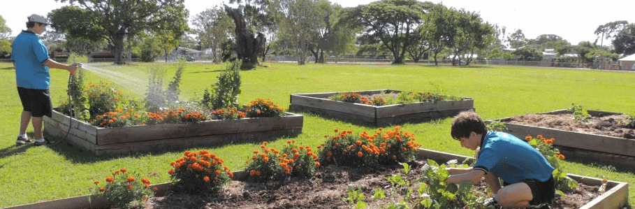 Wellington Point State High School facilities - gardens