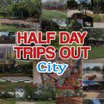 Half Days Out Brisbane trains