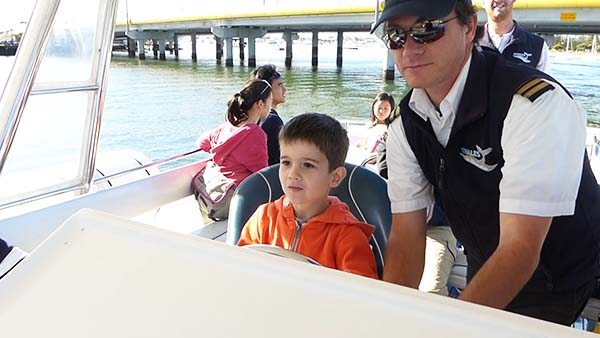 whale watching cruises for kids gold coast