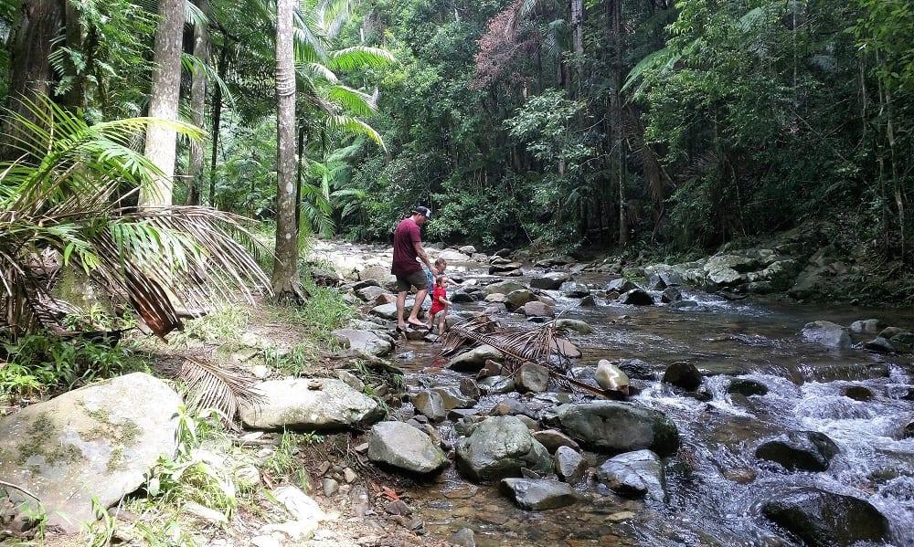 bush safety creek