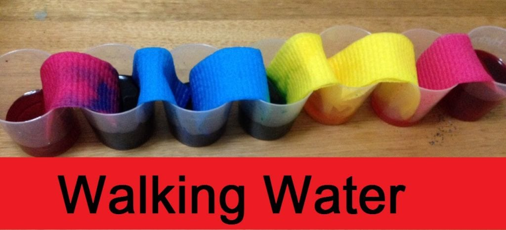 Walking Water Science Experiment for Kids | Families Magazine