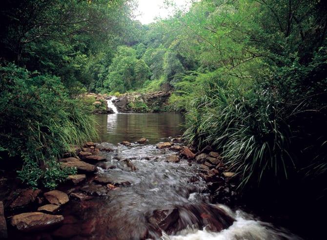 Gardners Falls Day Trip swimming hole