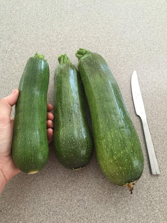 easy mini zucchini quiche