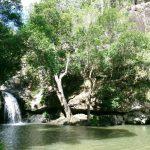 swim-kondalilla-falls