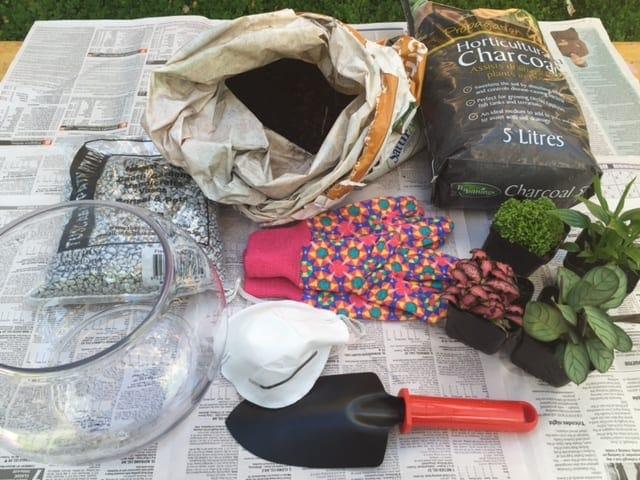 terrarium preparation. small shovel, glass bowl, dirt and plants to put into a terrarium