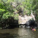 Kondalilla Swimming holes near Brisbane Day Trip from Brisbane