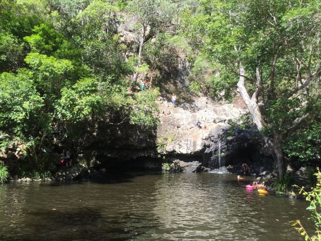 Kondalilla Swimming Day Trip