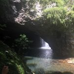 family-day-trip-to-springbrook-national-park 4
