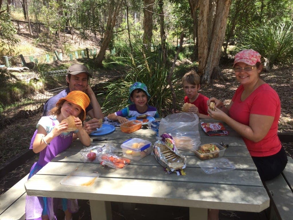 unyaville-conservation-park-things-to-do-in-albany-creek-with-kids