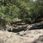 Cedar Creek Falls Mt Tamborine