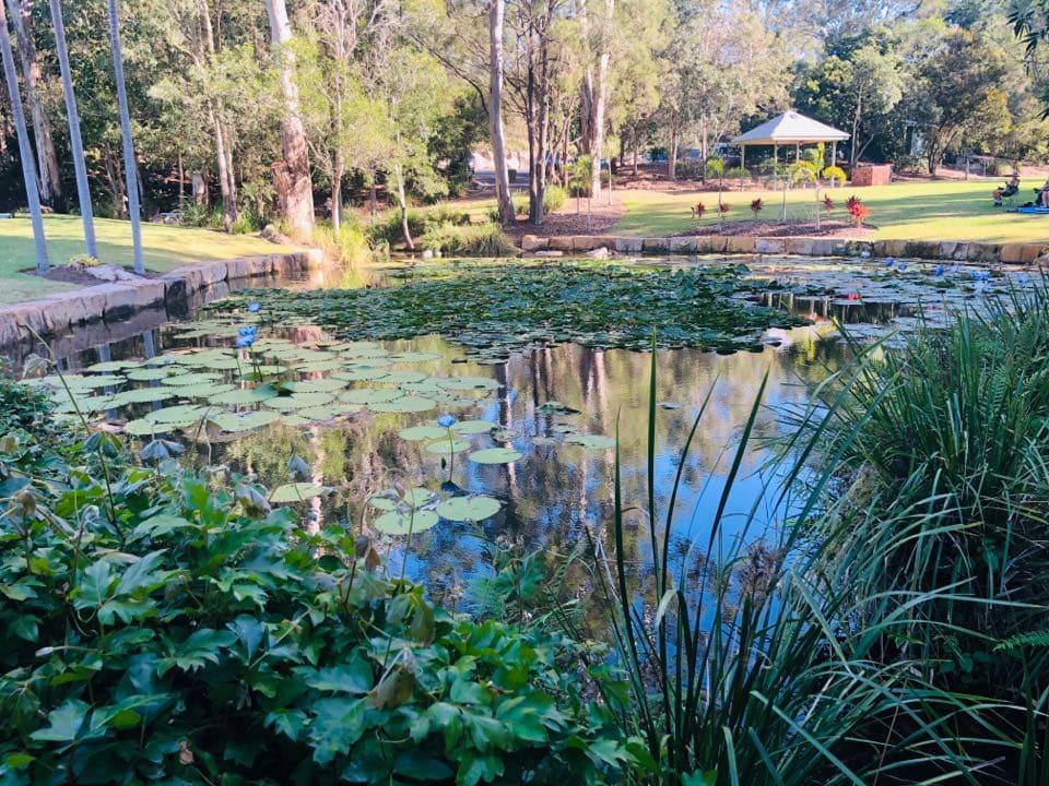 Kholo Botanical Gardens featured image