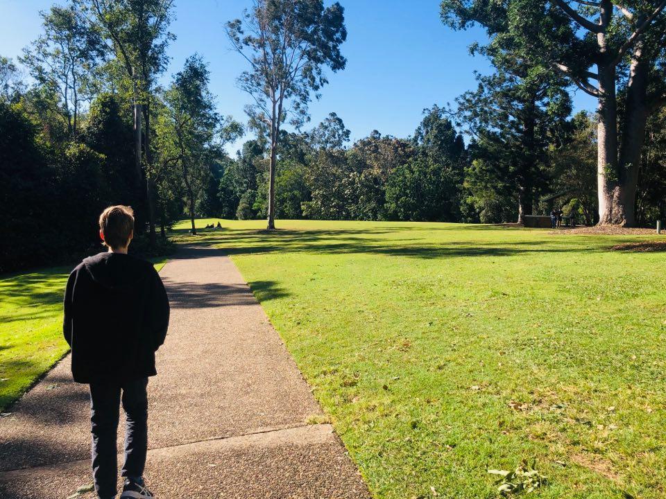 Coal Creek bush walk at Kholo gardens