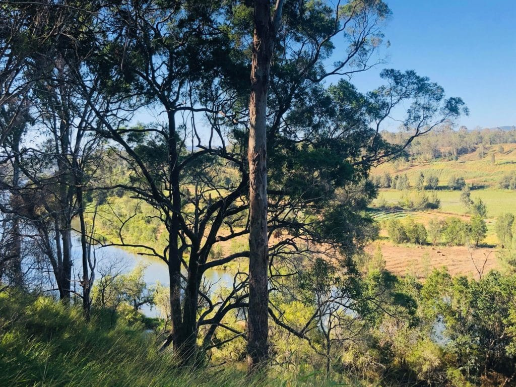 View of the Brisbane River from the Kholo Botanical Gardens
