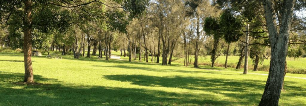 Carindale Minnippi Parklands
