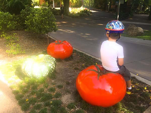 Roma Street Parkland tomato