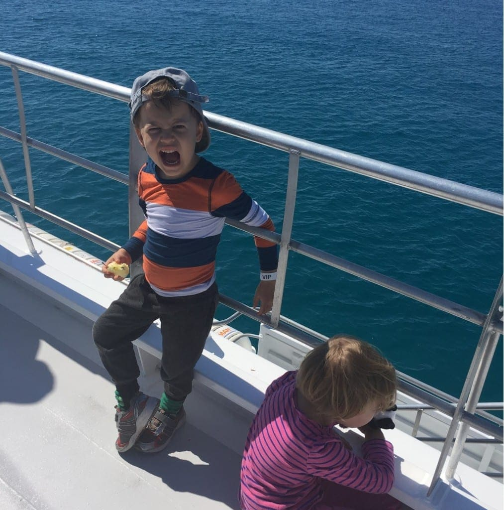 Brisbane Whale Watching with kids
