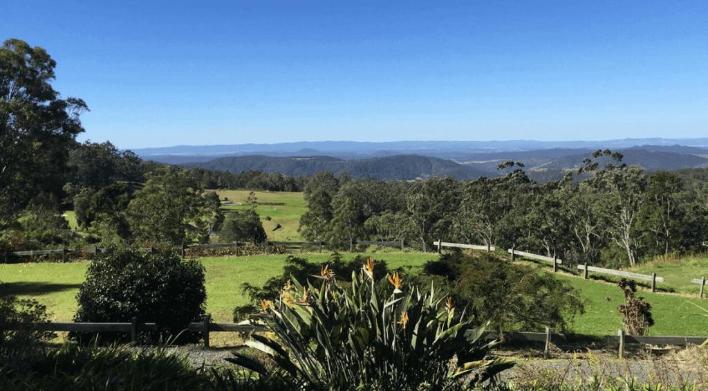 wide landscape shot of ravensbourne national park