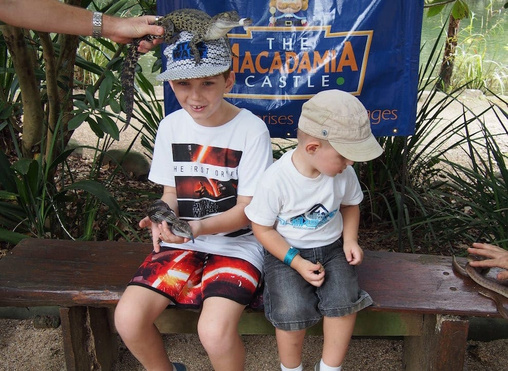 Macadamia Castle getting friendly with reptiles