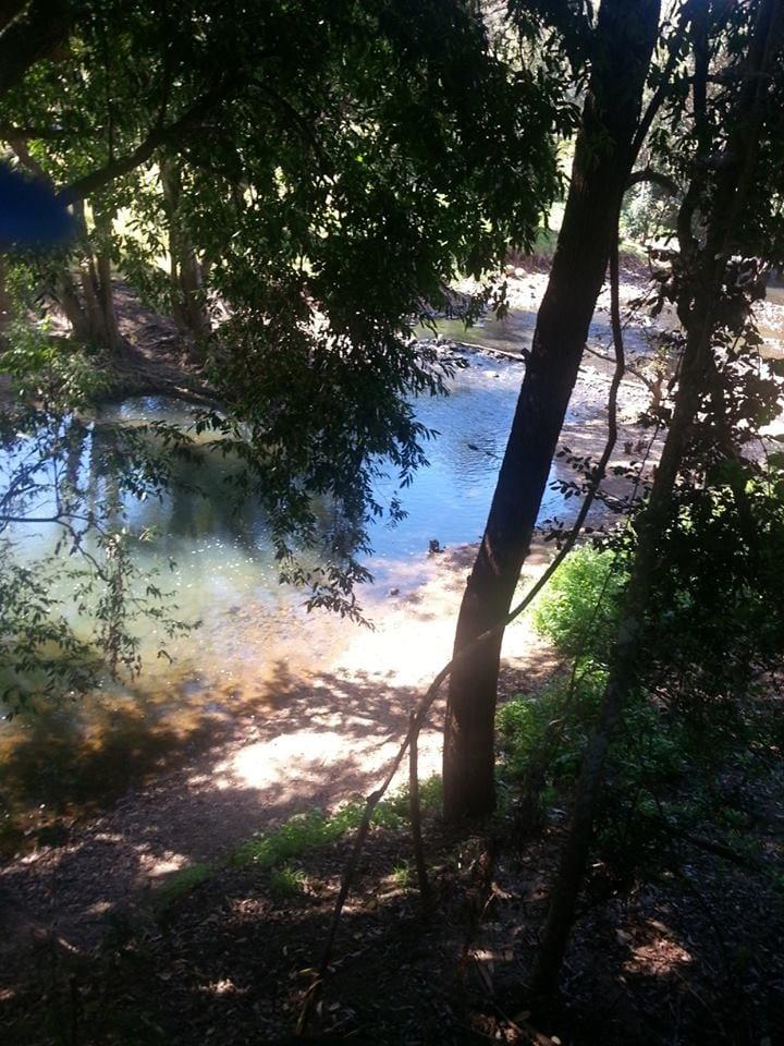 neurum creek swimming holes