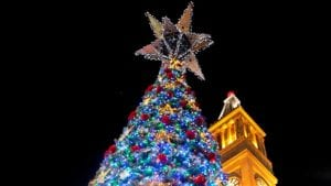 the-lighting-of-the-christmas-tree - christmas activities in Brisbane