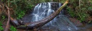 Mapleton National Park gheerulla-creek-2