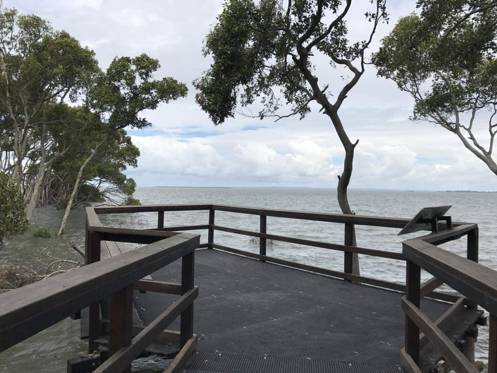 FREE QLD School Holiday - Wynnum Mangrove Boardwalk