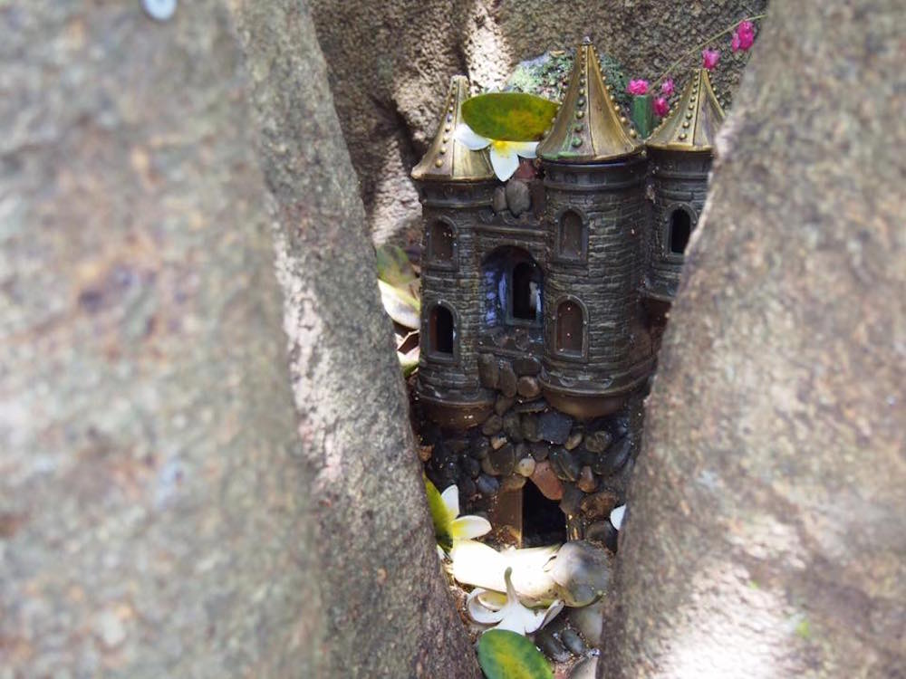 Fairy House hidden in a tree
