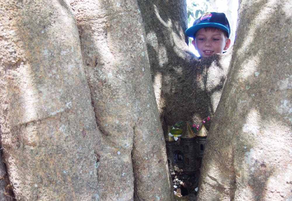 Little boy peering into tree to find fairy house