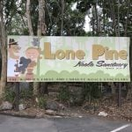 places to take overseas visitors lone pine