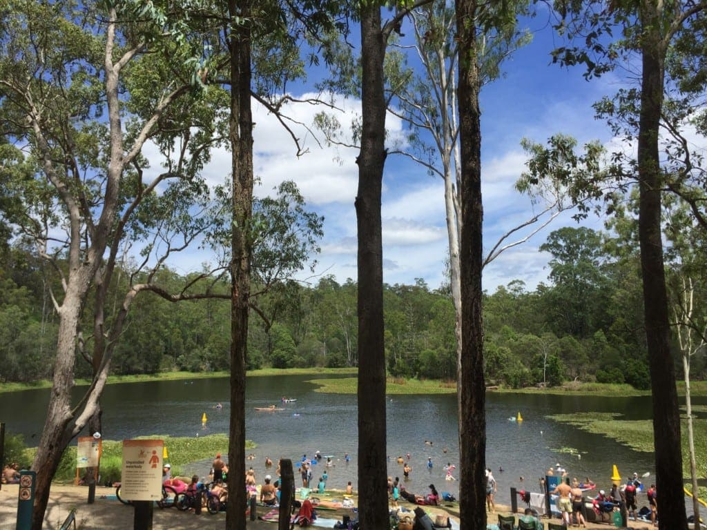 Enoggera Reservoir Swimming hole