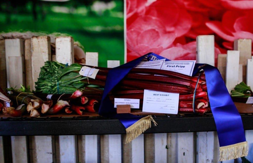 Award winning produce in the pavillion tents at the Mount Tamborine 2017 Show