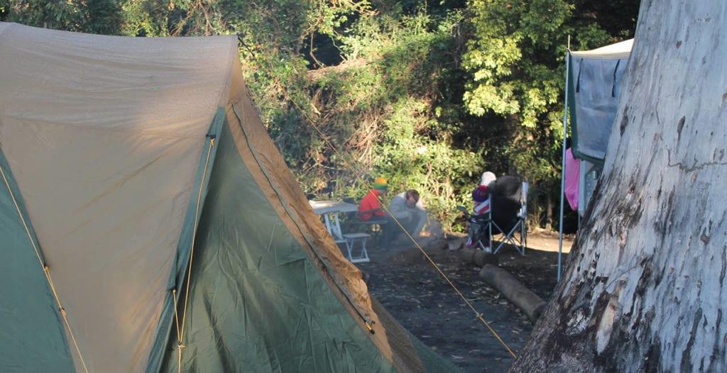 Binna Burra Lodge campsite - camping Gold Coast