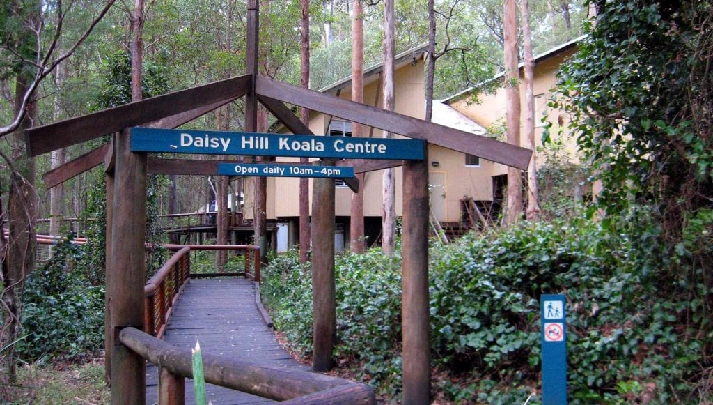 Daisy Hill Koala Centre entrance sign