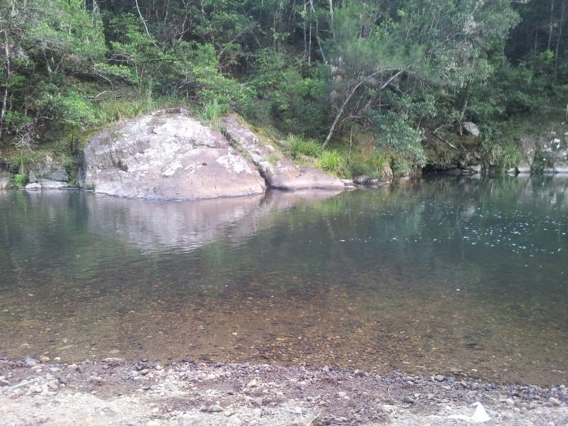 Forest Park swimming hole