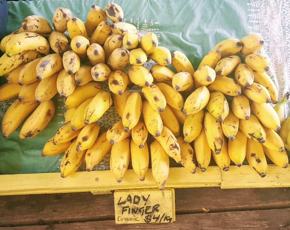 Freeman's Organic Farm fresh bananas on market stand
