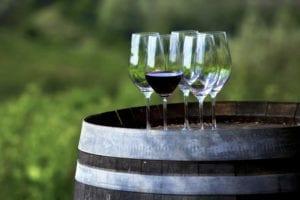 Mount Tamborine Winery and Homestead - Mt Tamborine vineyards