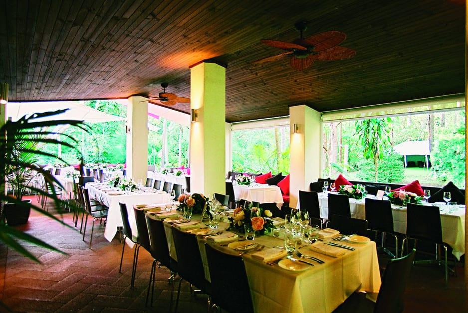 Places to eat at Mt Tamborine - Songbirds in the Forest, mt tamborine