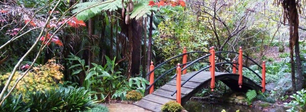 Tamborine Mountain Botanic Gardens walking trails