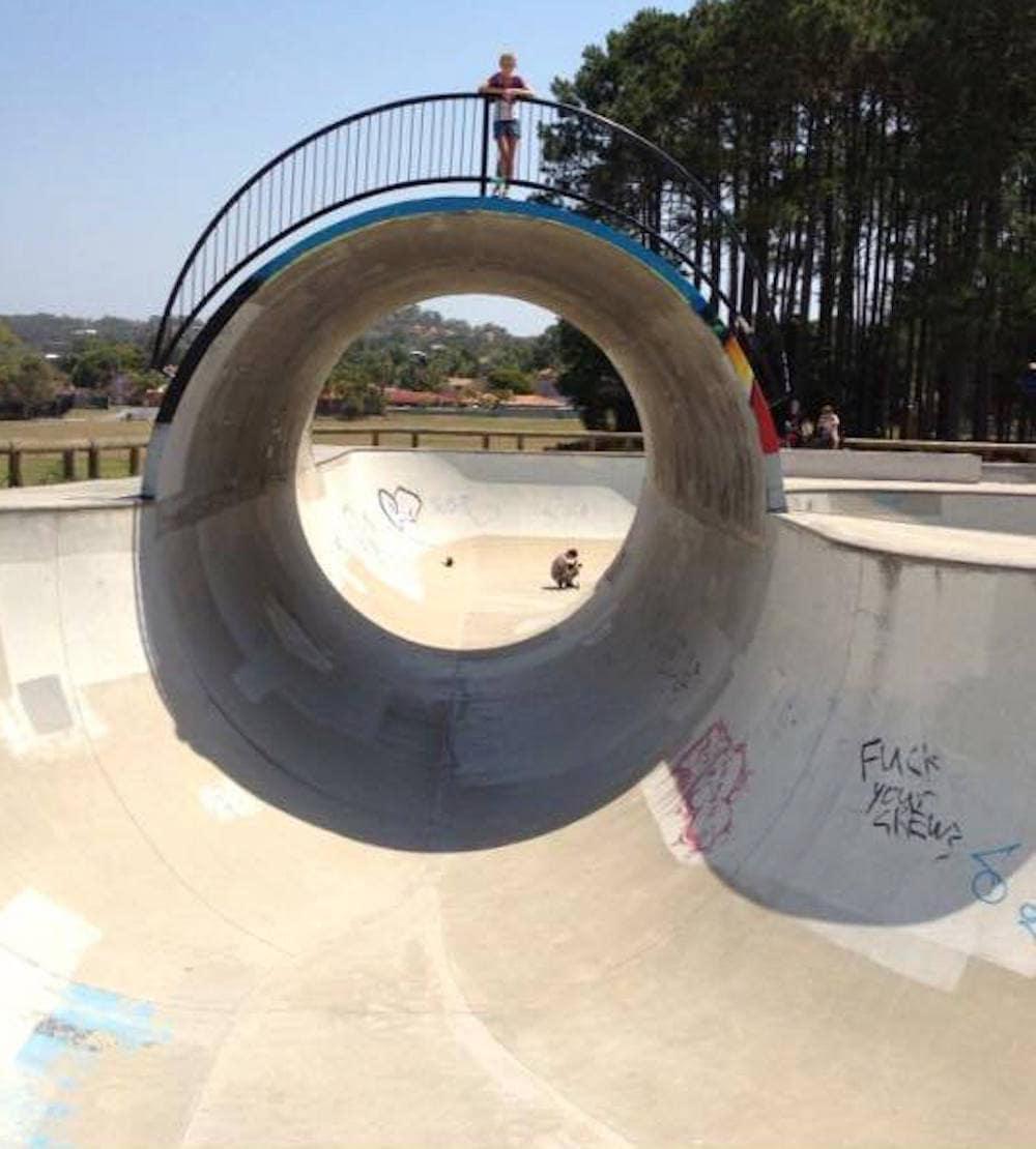 Elanora Skate Park