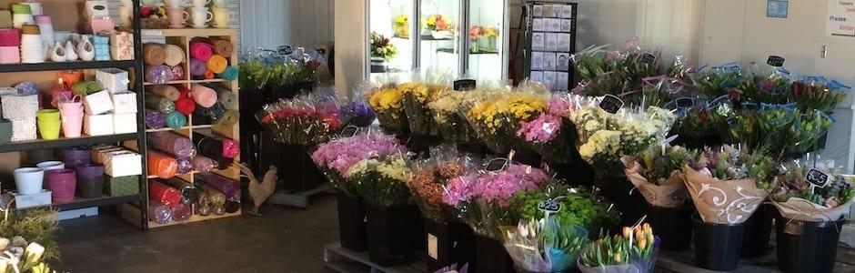 Toowoomba Flower Markets and Toowoomba Florists