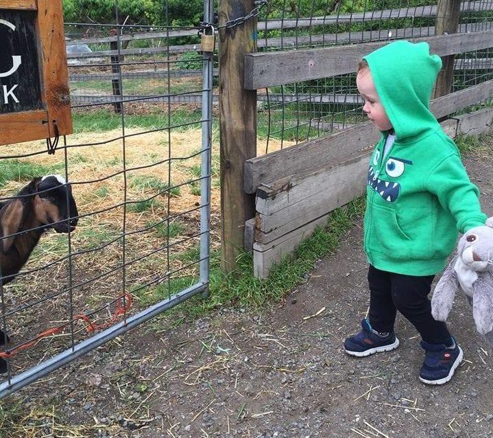 farm visits Brisbane