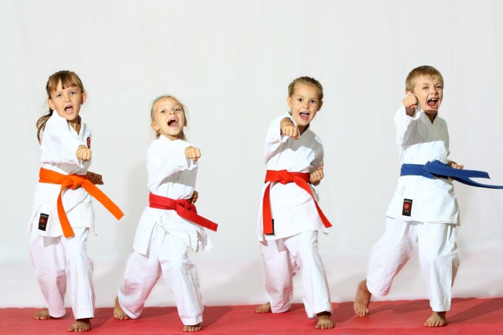 Martial Arts Sunshine Coast