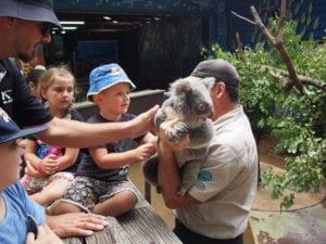 family petting a koala dreamworld for families