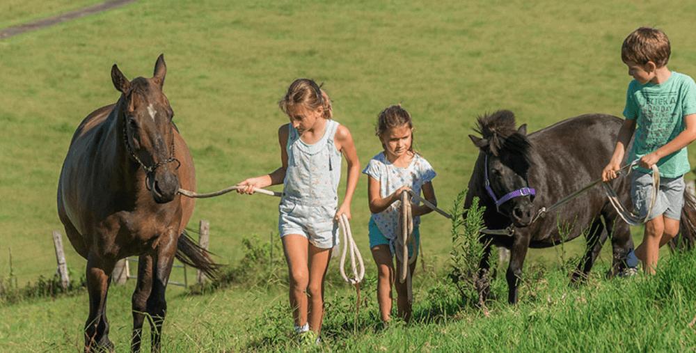 Little girls leading ponies Farmstay Byron Bay