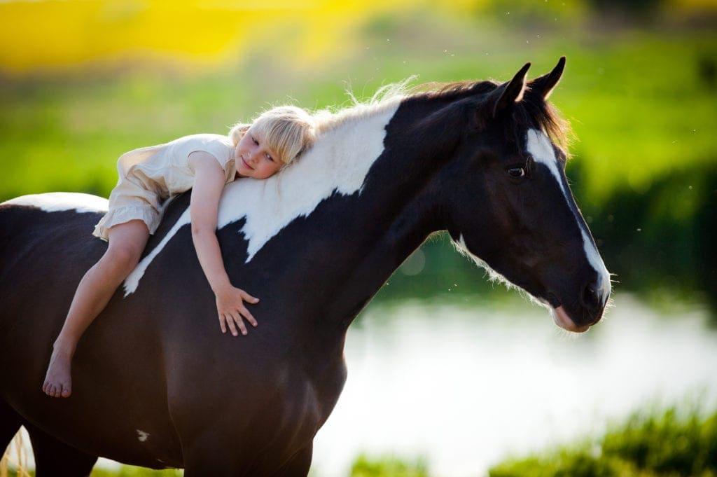 horse riding Toowoomba