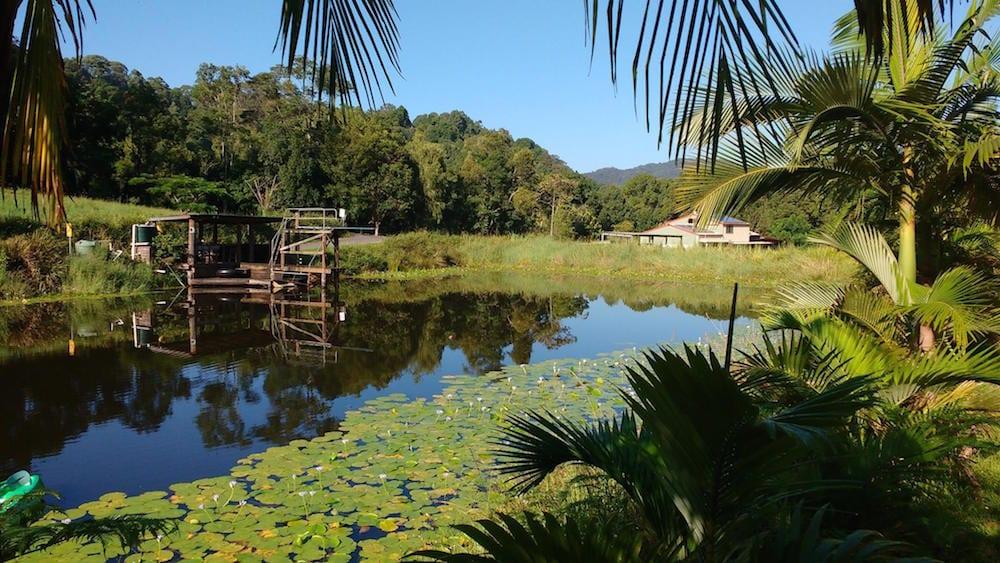 Hosanna farmstay Byron Bay